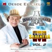 Desde el Cielo, Vol.2 de Aniceto Molina
