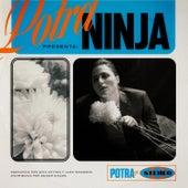 Ninja by Potra