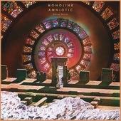 Amniotic (Deluxe Version) by Monolink
