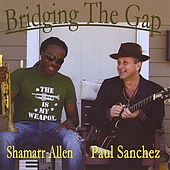 Bridging The Gap by Shamarr Allen