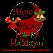 Want You Back This Christmas (Festive Yuletide Mix) de Mojo Rizin
