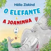 O Elefante e a Joaninha de Hélio Ziskind