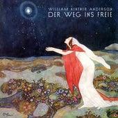 Der Weg ins Freie de Various Artists