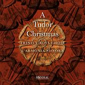 A Tudor Christmas by Various Artists