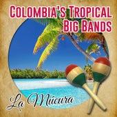 Colombia's Tropical Big Bands / La Múcura (Tropical) by Lucho Bermúdez Orquesta, Edmundo Arias Orquesta, Pacho Galán Orquesta, Pedro Salcedo y su Orquesta, Orquesta Ritmos de la Sabana, La Sonora Dinamita