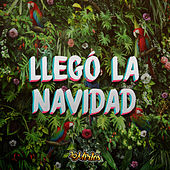 Llegó la Navidad by Los Mirlos