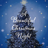 A Beautiful Christmas Night by Various Artists