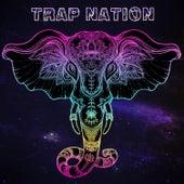 Money on My Mind de Trapnation