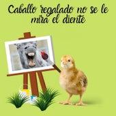 Caballo Regalado No Se Le Mira El Diente by Frenmad