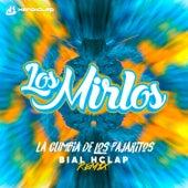 La Cumbia de los Pajaritos (Bial Hclap Remix) by Los Mirlos