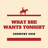 What She Wants Tonight by Dean McNeal