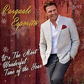 It's the Most Wonderful Time of the Year von Pasquale Esposito