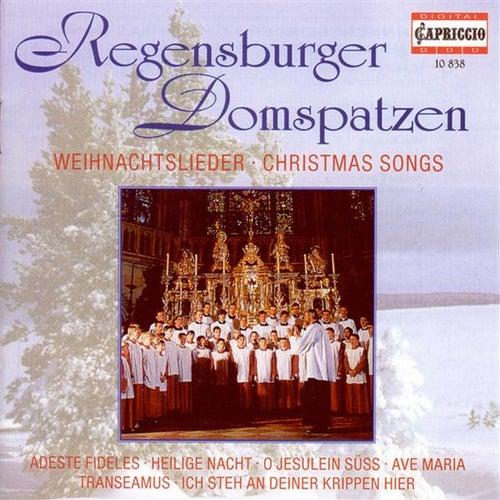 Christmas Choral Concert: Regensburg Cathedral Choir - Lutzel, J.H. / Pachelbel, J. / Handl, J. / Rheinberger, J.G. / Brahms, J. / Britten, B. by Various Artists