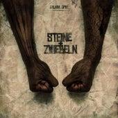 Steine & Zwiebeln (Deluxe version) by Sylabil Spill