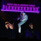 Flex de Soto Asa