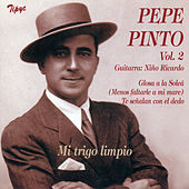 Mi Trigo Limpio Vol. 2 de Pepe Pinto