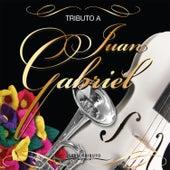 Tributo A JUAN GABRIEL - Serie Tributo van Various Artists