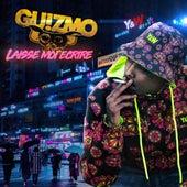 Laisse-moi écrire.. de Guizmo