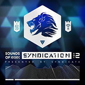 Sounds of Syndication, Vol. 2 (Presented by Syndicate) by Syndicate