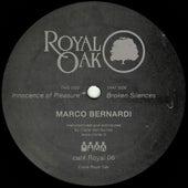 Broken Silences by Marco Bernardi