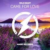 Came For Love von Wild Heart