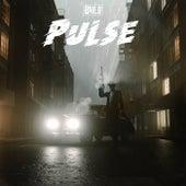 Pulse by Bailo