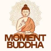 Moment Buddha de Various Artists