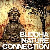 Buddha Nature Connection de Various Artists