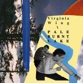 Pale Burnt Lake by Virginia Wing