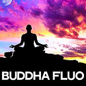 Buddha Fluo by Various Artists