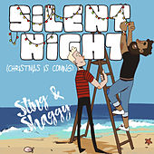 Silent Night (Christmas Is Coming) de Sting & Shaggy
