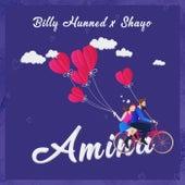Amina von Billy Hunned