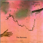 FAREWELL Remixes von Armnhmr