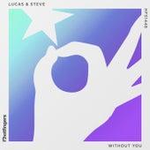 Without You de Lucas & Steve