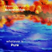 Whatever Is Pure by Acapeldridge