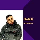 Wonderful by Holi B