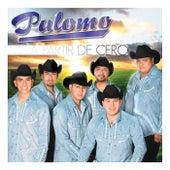 A Partir De Cero van Palomo