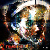 Synaesthesia by Various Artists