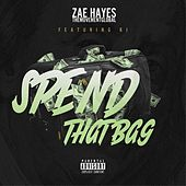 Spend That Bag von Zae Hayes