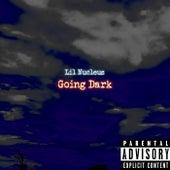 Going Dark (Mixtape) [Album] de Lil Nucleus