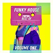 Best of Funky House - Volume One de Various Artists