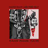 Please Please Please de David Shaw and The Beat