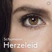 6 Gesänge, Op. 107: No. 1, Herzeleid van Hanna-Elisabeth Müller