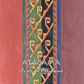 Aires del Altiplano de Atacama