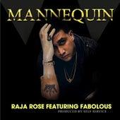 Mannequin (feat. Fabolous) by Raja