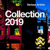 Collection 2019 by Various Artists