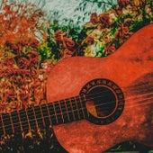 Classical Guitar von Leocoda