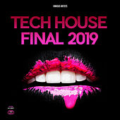Tech House Final 2019 von Various Artists
