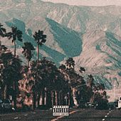 Palm Springs by Oxycore