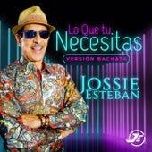 Lo Que Tu Necesitas (Versión Bachata) de Jossie Esteban